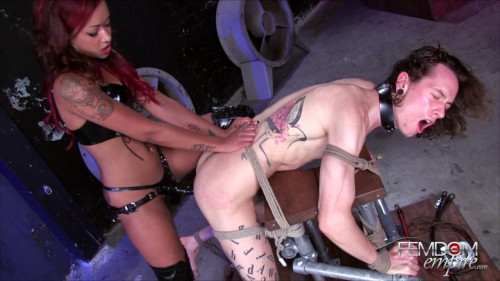 DOWNLOAD from FILESMONSTER: femdom and strapon Skin Diamond He loves the Dick