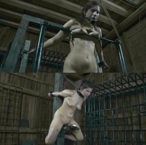 Hot ass bondage slut in hard action
