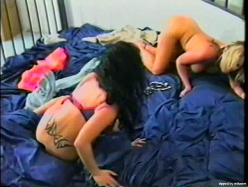 DOWNLOAD from FILESMONSTER: lesbians Cat Fight 17 The Jailhouse