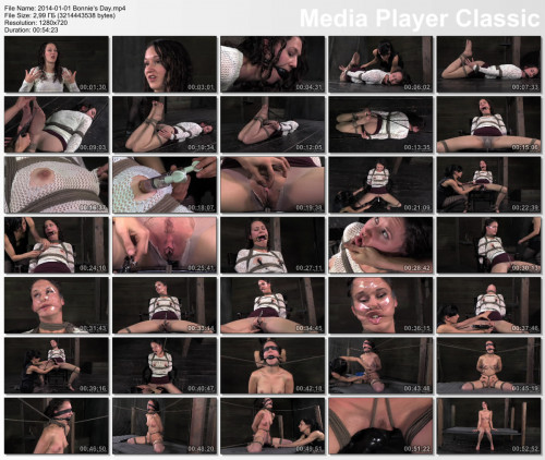 DOWNLOAD from FILESMONSTER: bdsm Bonnie's Hard Day