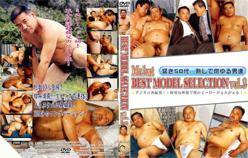 Best Model Selection Vol 3 Asian Gays