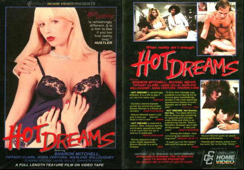 DOWNLOAD from FILESMONSTER: retro Hot Dreams