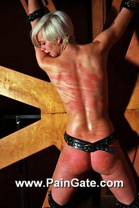 Paingate-Whipping wheel BDSM