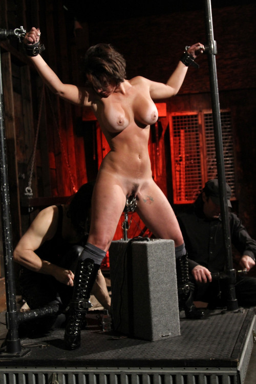 DOWNLOAD from FILESMONSTER:  BDSM Extreme Torture  Live Cumbots (2013)