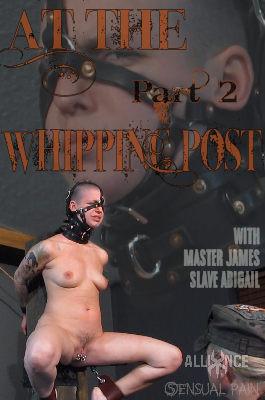 Sensualpain – Nov 27, 2016 – At The whipping Post part 2 – Abigail Dupree, Master James
