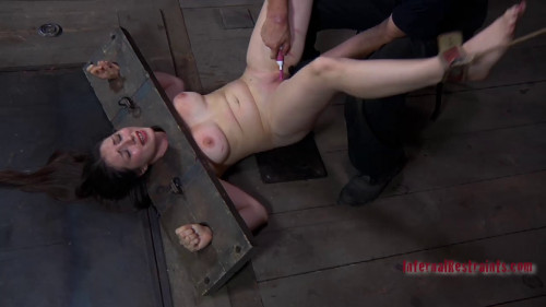 DOWNLOAD from FILESMONSTER: bdsm To Please Sister Dee Pd
