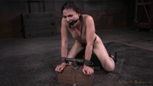 DOWNLOAD from FILESMONSTER: bdsm Amy Faye Deepthroating brunette cutie shackled to sybian and used hard (2015)