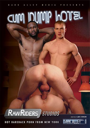 Cum Dump Hotel Gay Full-length films