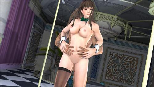 Hitomi Lovers 3D Porno