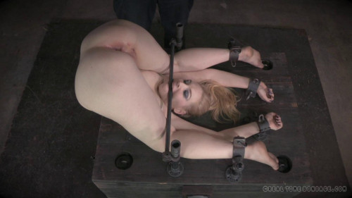 DOWNLOAD from FILESMONSTER: bdsm Delirious Hunter 2 of 2