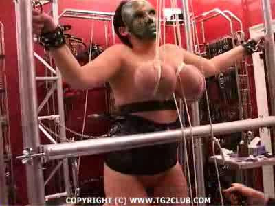 DOWNLOAD from FILESMONSTER: bdsm torturegalaxy ju v21