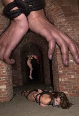 The Fort Violet Shonta BDSM