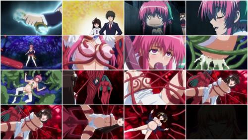 Sub Anime and Hentai