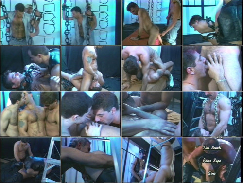 DOWNLOAD from FILESMONSTER: gay full length films Real New York Men