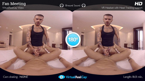 Virtual Real Gay - Fan Meeting (Android/iOS) Gay 3D stereo