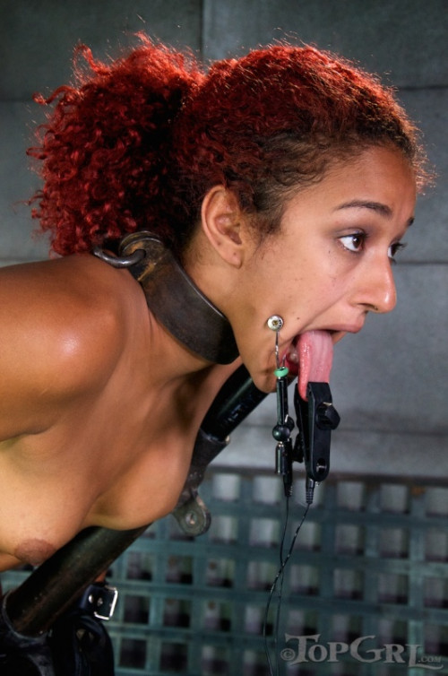 DOWNLOAD from FILESMONSTER: bdsm TG Pushing Daisy Daisy Ducati, Elise Graves September 26, 2014