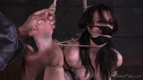 The Temp (23 Sep 2015) Hardtied BDSM