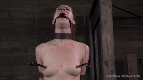 Sake II BDSM