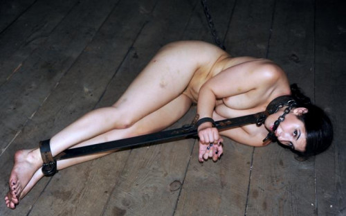 DOWNLOAD from FILESMONSTER: bdsm Chained for pleasure