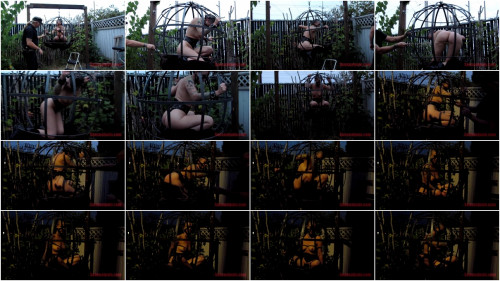 SensualPain – July 21, 2016 – Sphere Cage Fuckery at Dusk – Abigail Dupree