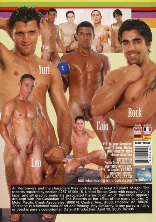 DOWNLOAD from FILESMONSTER:  Pau Brasil Gay Porn Videos  Beauty Prison  Levando Ferro