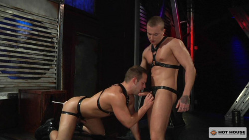 DOWNLOAD from FILESMONSTER: gays Dave Circus, Luke Adams