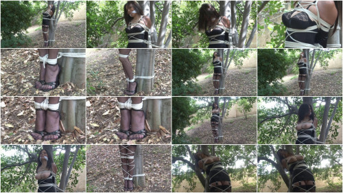 Bound and Gagged – Tied to a Tree in Lingerie – Ashley Renee
