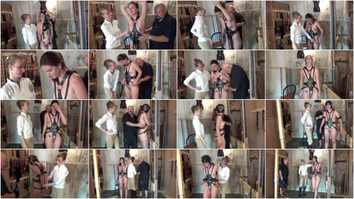 Blind Harnessed Bitted Part Three BDSM