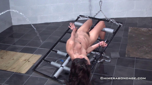 Ayla is typing commands into a laptop... (2015) BDSM