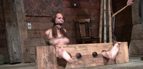 DOWNLOAD from FILESMONSTER:  BDSM Extreme Torture  Alisha Like Fetish Game