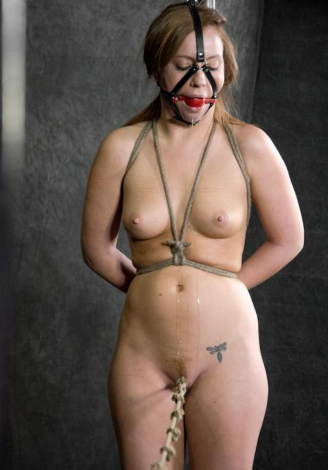 Wet & Desperate 2 BDSM