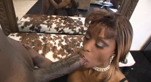 DOWNLOAD from FILESMONSTER: black Nightstick Black POV 3