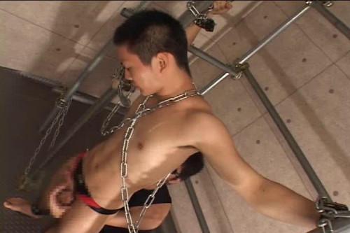 Sensuous Muscles Bondage - Gay Love Asian Gays