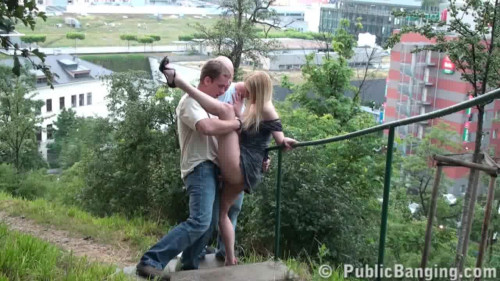 DOWNLOAD from FILESMONSTER: public sex Beautiful sex on the bridge