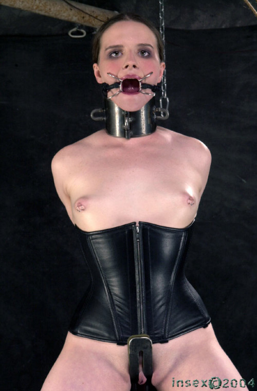 DOWNLOAD from FILESMONSTER: bdsm Insex Arabesque (Live Feed From September 8, 2004) AZ, 828