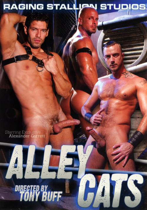 Alley Cats Gay Full-length films