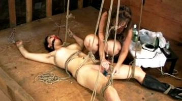 DOWNLOAD from FILESMONSTER: bdsm Flay Epilation