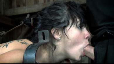 DOWNLOAD from FILESMONSTER:  BDSM Extreme Torture  Boxed and Stocked 2