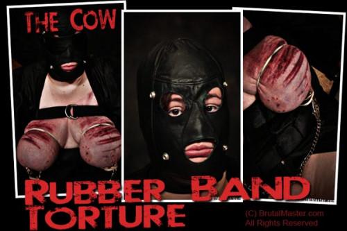 bdsm Cow - Rubber Band Torture