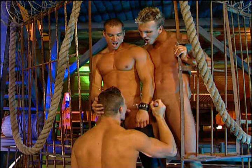 The Crave (2007) Gay Movie
