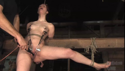 bdsm Whipped Red - Calico