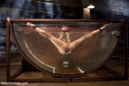 Bound, Soaked, Fucked and Dunked BDSM