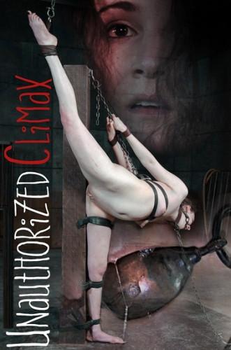 bdsm Unauthorized Climax-Endza