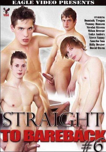 Straight To Bareback Vol. 6