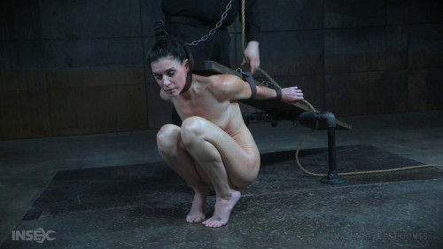bdsm Calisthenics