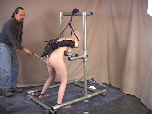 Shaved Submission With Ivy Thornton BDSM