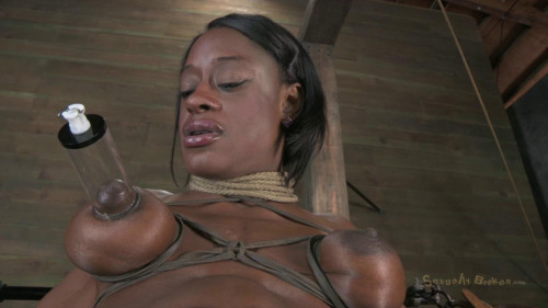 bdsm Ashley Starr