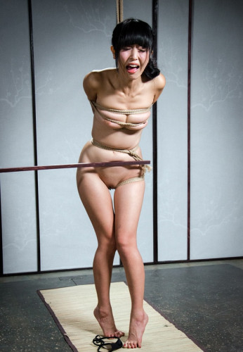 bdsm Return to Kinbaku - Marica Hase