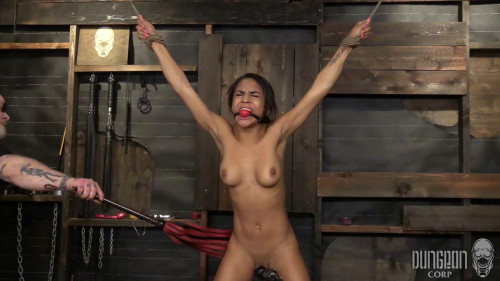 bdsm Nicole Bexley - Hot ass Fuck and First Timer part 3