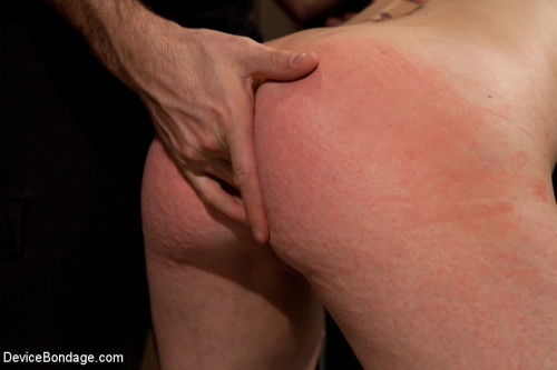 Cherry Torn gets all tore up as she gets her ass whipped all to hell! BDSM